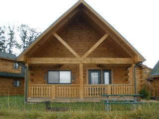 Vacation Log Cabin Style Villa Warrens, Wisconsin - Warrens vacation rentals