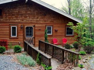 Red Twig Chalet in Banner Elk, NC - Blue Ridge Mountains vacation rentals