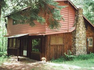 Original Log Cottage on 12 Wooded Lakeshore Acres - Barnes vacation rentals