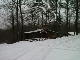 COZY Mountain Cottage near Carters Lake - Chatsworth vacation rentals