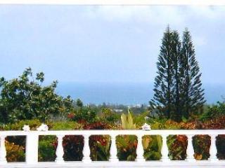 Villa Swarm your second home - Montego Bay vacation rentals