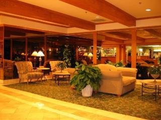 2 Bedroom Condo..Spectacular Center-Strip Location - Las Vegas vacation rentals