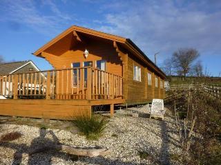 CABAN COED - Llandysul vacation rentals