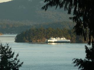 San Juan Island Water View Home - San Juan Islands vacation rentals