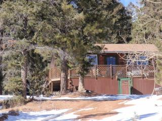 EverGreen Cottage, Near Cripple Creek Colorado - Divide vacation rentals