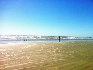 4-Level Galveston Beach House - 5 night minimum - Galveston vacation rentals