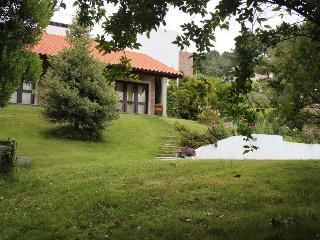 Cozy Villa with Satellite Or Cable TV and Television - Lamego vacation rentals