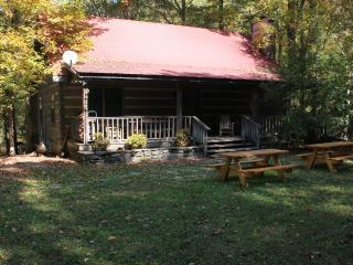 Private Log Cabin with Fireplace on 35 acres - Franklin vacation rentals