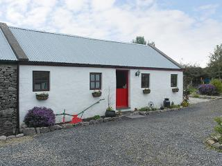 1 bedroom Cottage with Parking Space in Castlebar - Castlebar vacation rentals
