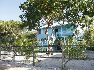 Blue Garden House - Toledo vacation rentals