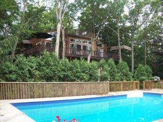 Wooded Family Retreat with Cottage - Hamptons vacation rentals