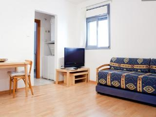 Bright modern Studio Apartment: East Raanana - Ra'anana vacation rentals