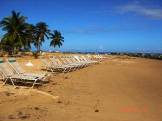 Great Price! Ocean View Villa by Embassy Suite - Dorado vacation rentals