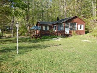 Lakefront, private dock, fish, swim, boat availabl - Vernon vacation rentals