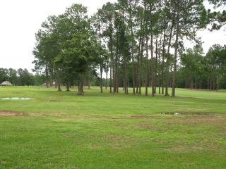 Modern, Upscale, Spacious Home on HLR Golf Course - Pittsburg vacation rentals