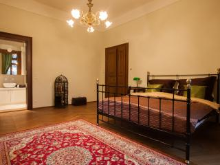 Vila WALTER & SONS - Prague vacation rentals