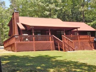 Bearadise Retreat -  Amazing cabin, Hot Tub & View - Ellijay vacation rentals