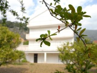 Villa Marina - Slano vacation rentals