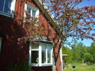 Nice 5 bedroom Växjö Villa with DVD Player - Växjö vacation rentals