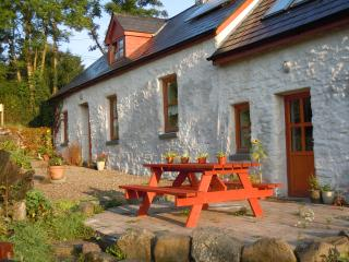 Cozy 2 bedroom Farmhouse Barn in Ennis - Ennis vacation rentals