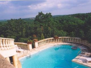 Charming 10 bedroom Chateau in Luzech - Luzech vacation rentals