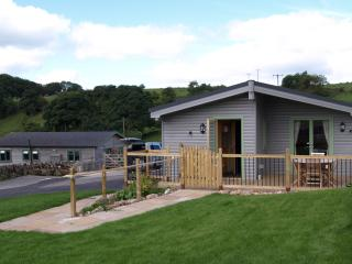 Wonderful Cabin with Internet Access and Dishwasher - Brassington vacation rentals