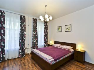 Great 2 rooms apartment in city centre, parking - Saint Petersburg vacation rentals