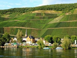 Holiday Haven  By The Moselle - Bernkastel-Kues vacation rentals