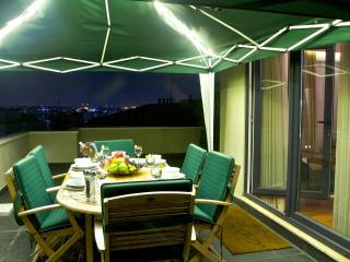 3BR, 2BA Apt w Private Terrace - Istanbul vacation rentals
