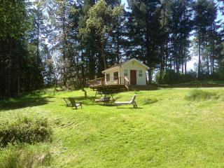 Cozy Friday Harbor Cabin rental with Deck - Friday Harbor vacation rentals