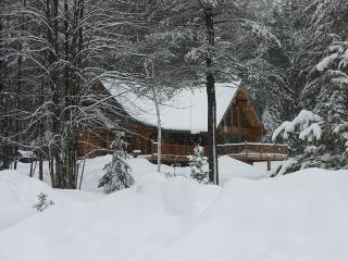 Awesome Adirondack Log Cabin with 80 Acres to Play - Brant Lake vacation rentals