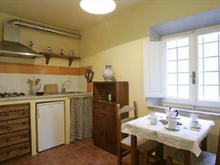 Cozy 2 bedroom Condo in Province of Lucca - Province of Lucca vacation rentals