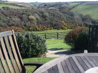 Beautiful 3 bedroom House in Padstow - Padstow vacation rentals