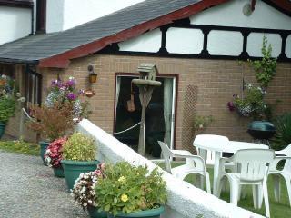 Wild Rose Cottage - Holsworthy vacation rentals