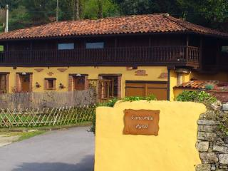 Nice Barn with Internet Access and Television - Gijón vacation rentals