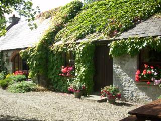 Beautiful Limerick vacation Cottage with Central Heating - Limerick vacation rentals