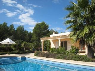 Perfect Villa with Internet Access and Wireless Internet - Santa Gertrudis vacation rentals