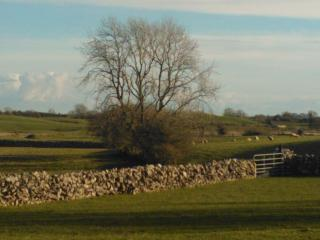 Lovely Cottage with Internet Access and Dishwasher - Ballinrobe vacation rentals