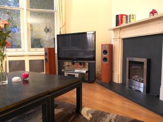 Luxury Apartment In Soho - Woodston vacation rentals