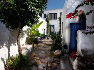 3 bedroom House with Internet Access in Lachania - Lachania vacation rentals