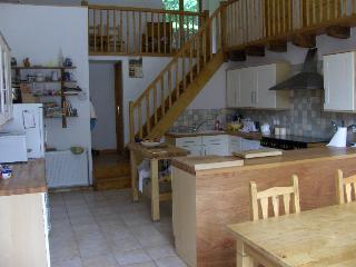 Spacious property in grounds on banks of river. - Bussiere-Poitevine vacation rentals