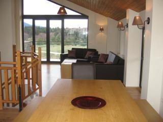 Chalet Kateritsa - Borovets vacation rentals