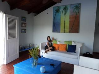 Nice House with Internet Access and Grill - Cabarete vacation rentals