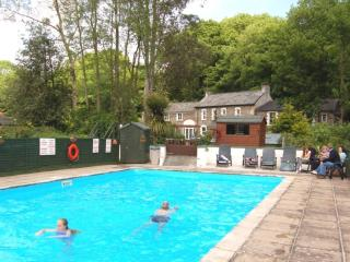 Idyllic cottage with heated pool & free WiFi - Saltash vacation rentals