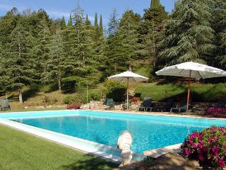 Nice Farmhouse Barn with Internet Access and Central Heating - Cetona vacation rentals