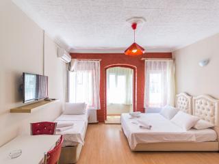 Studio Flat Near Istiklal Avenue Taksim - 123 - Istanbul vacation rentals
