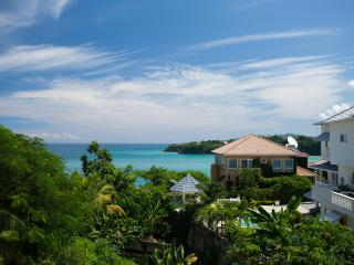 Five-person staff, elegant rooms, prime location - Jamaica vacation rentals