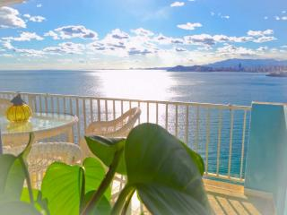 FLYING WHALE - Benidorm vacation rentals