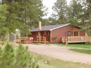 Tin Mill Cottage - Black Hills and Badlands vacation rentals
