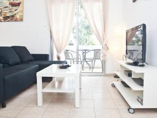 Lovely apartment - very central & close to beach - Tel Aviv vacation rentals